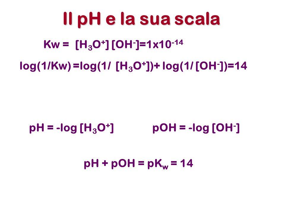 Il pH e la sua scala Kw = [H3O+] [OH-]=1x10-14